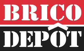 logo bricodepot